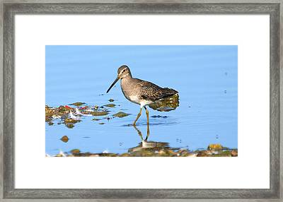 I Know You're There Framed Print by Kala King