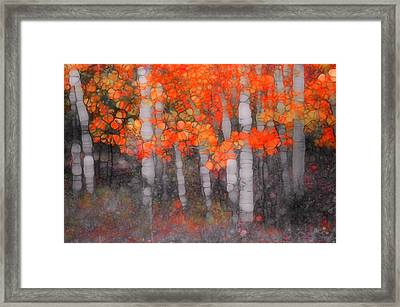 I Love You In Orange Framed Print by Tara Turner