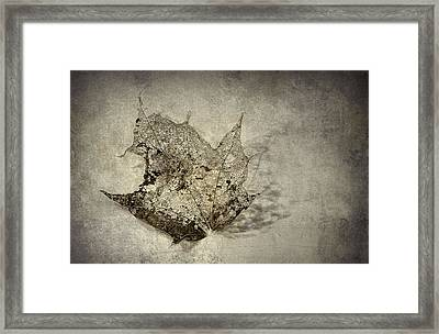 I Miss You Most Of All Framed Print by Scott Norris