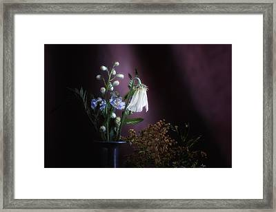 I Once Was Beautiful Framed Print by Tom Mc Nemar