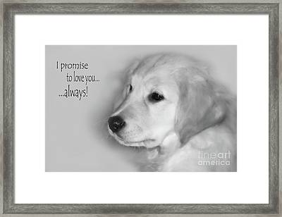 I Promise To Love You Always Framed Print by Cathy  Beharriell