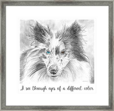 I See Through Eyes Of A Different Color Framed Print by Amy Kirkpatrick