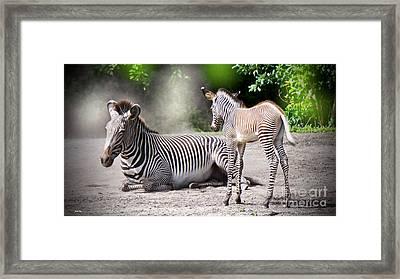 I  Wanna Play Framed Print by Judy Kay