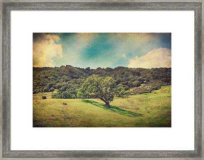 I Will Lay Down My Heart Framed Print by Laurie Search