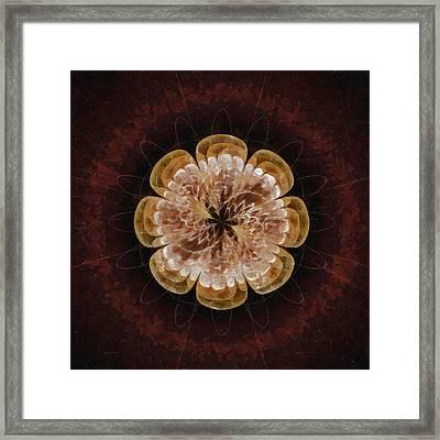 Iatrogenicity Style Flower  Id 16164-012738-87760 Framed Print by S Lurk