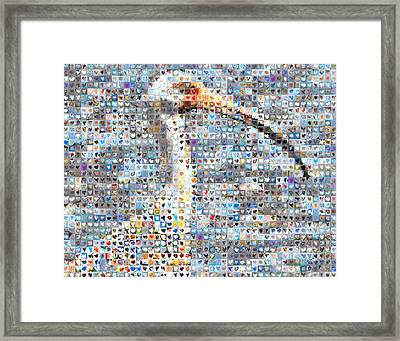 Ibis Framed Print by Boy Sees Hearts