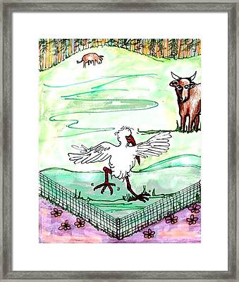 Ibis Hopping Framed Print by Carol Allen Anfinsen