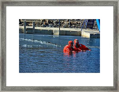 Icy Swim Duo Framed Print by Dan Brennan