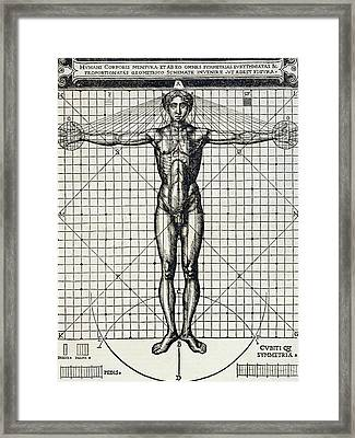 Ideal Proportions Based On The Human Body Framed Print by Cesare di Lorenzo Cesariano