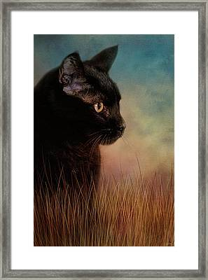 If Only Framed Print by Jai Johnson
