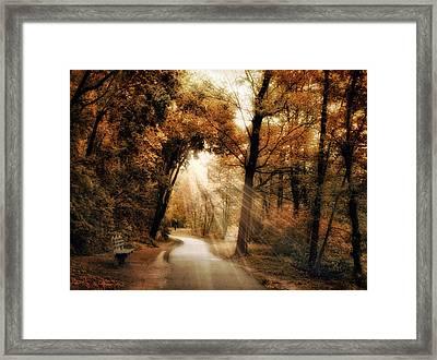 Illumination Framed Print by Jessica Jenney