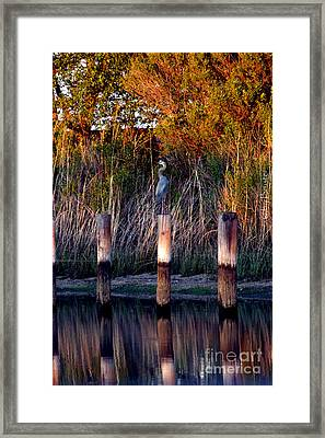Illusion Framed Print by Clayton Bruster