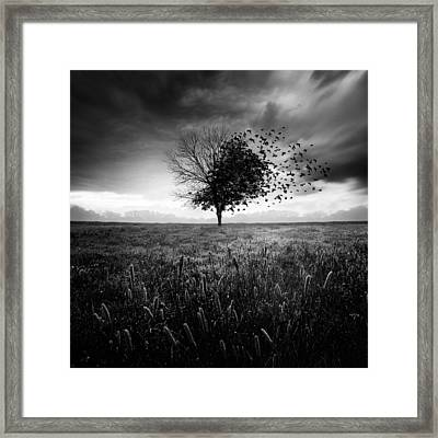 Illusion D'un Printemps Perdu Framed Print by Sebastien Del Grosso