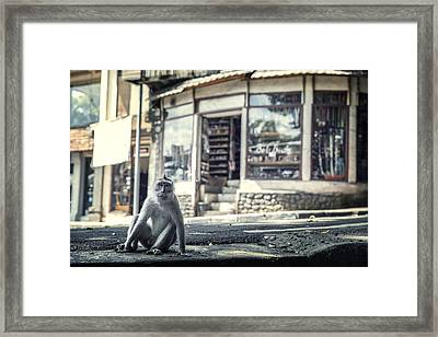 I'm In Charge, Ask Me Anything. Framed Print by Cho Me