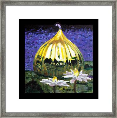 Image Number Eleven Framed Print by John Lautermilch