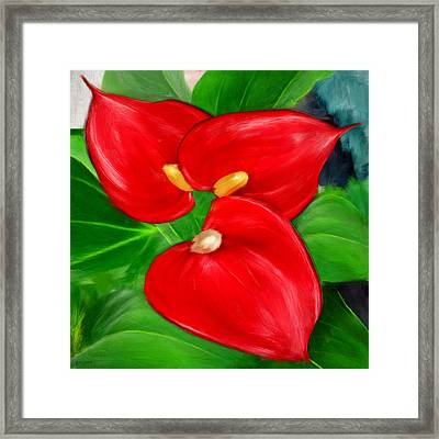 Immeasurable Beauty- Anthurium Paintings Framed Print by Lourry Legarde