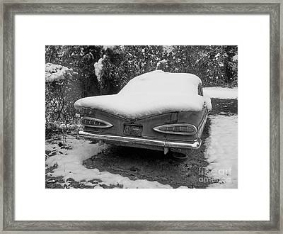 Impala In The Snow In Black And White Framed Print by Deborah Montana
