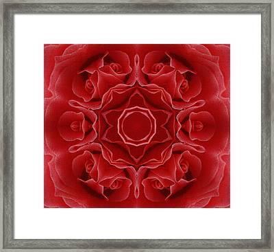 Imperial Red Rose Mandala Framed Print by Georgiana Romanovna