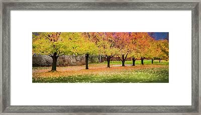 Impressionist Autumn Framed Print by Theresa Tahara