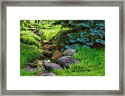 Impressions Of Gardens - A Miniature Creek Through The Fresh Spring Green Framed Print by Georgia Mizuleva