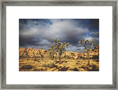 In A Restless World Framed Print by Laurie Search