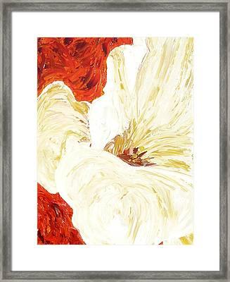 In Bloom Framed Print by Darlene Keeffe