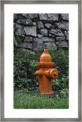In Case Of Fire . . . Framed Print by Murray Bloom