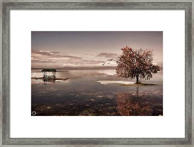 In Dreams Framed Print by Lourry Legarde