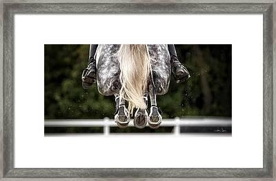 In Flight Framed Print by Joan Davis