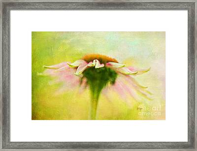 In Perfect Harmony Framed Print by Lois Bryan