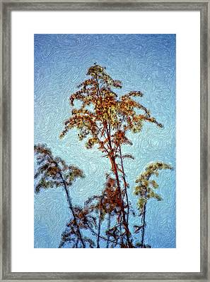 In Praise Of Weeds II Framed Print by Steve Harrington