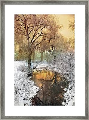 In The Calm Of Winter Framed Print by Tara Turner
