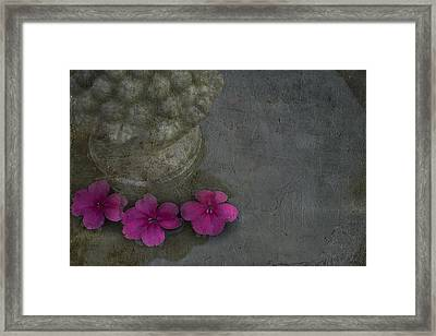 In The Fountain Framed Print by Rebecca Cozart