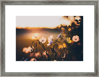 In The Garden Framed Print by Tracy  Jade