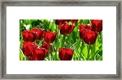 In The Morning Sun Framed Print by Lanjee Chee