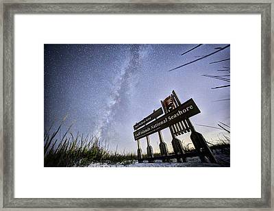 In The Sea Oats Of Fort Pickens Framed Print by JC Findley