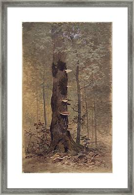 In The Woods Framed Print by Hopkinson Smith
