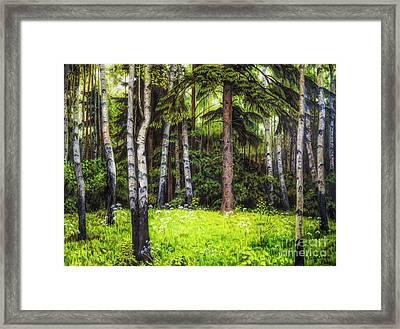 In The Woods Framed Print by Veikko Suikkanen
