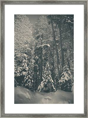 In Time Framed Print by Laurie Search