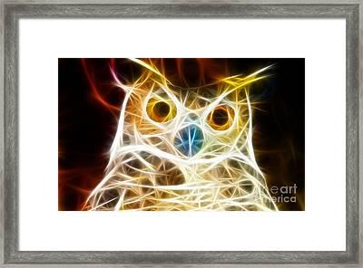Incredible Owl Portrait Framed Print by Pamela Johnson