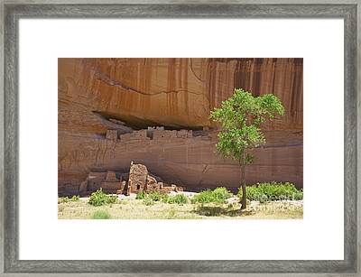 Indian Cliff Dwellings Framed Print by Thom Gourley/Flatbread Images, LLC