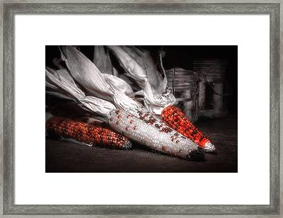 Indian Corn Still Life Framed Print by Tom Mc Nemar