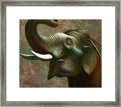 Indian Elephant 3 Framed Print by Jerry LoFaro