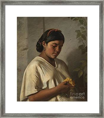 Indian Woman With Marigold Framed Print by MotionAge Designs