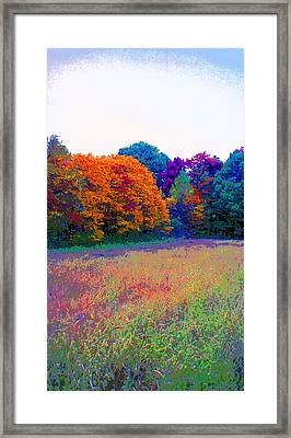 Indiana Autumn Field Image Framed Print by Paul Price