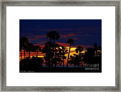 Indigo Sunset Framed Print by Barbara Bowen
