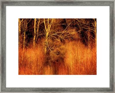 Inferno Framed Print by Wim Lanclus