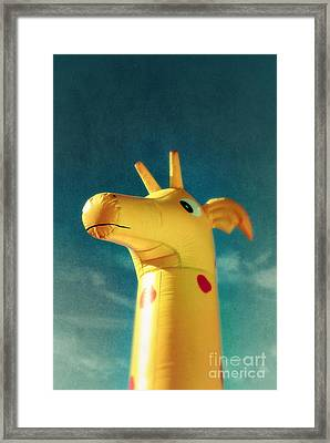 Inflatable Toy Framed Print by Carlos Caetano