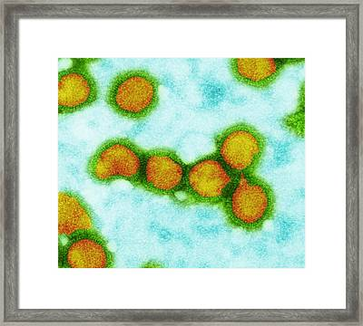 Influenza Viruses, Tem Framed Print by Dr Klaus Boller
