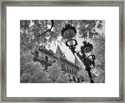 Infrared Street Light Black And White Barcelona Spain Framed Print by Jane Linders